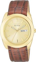 Citizen - BM800201P (Size: men)